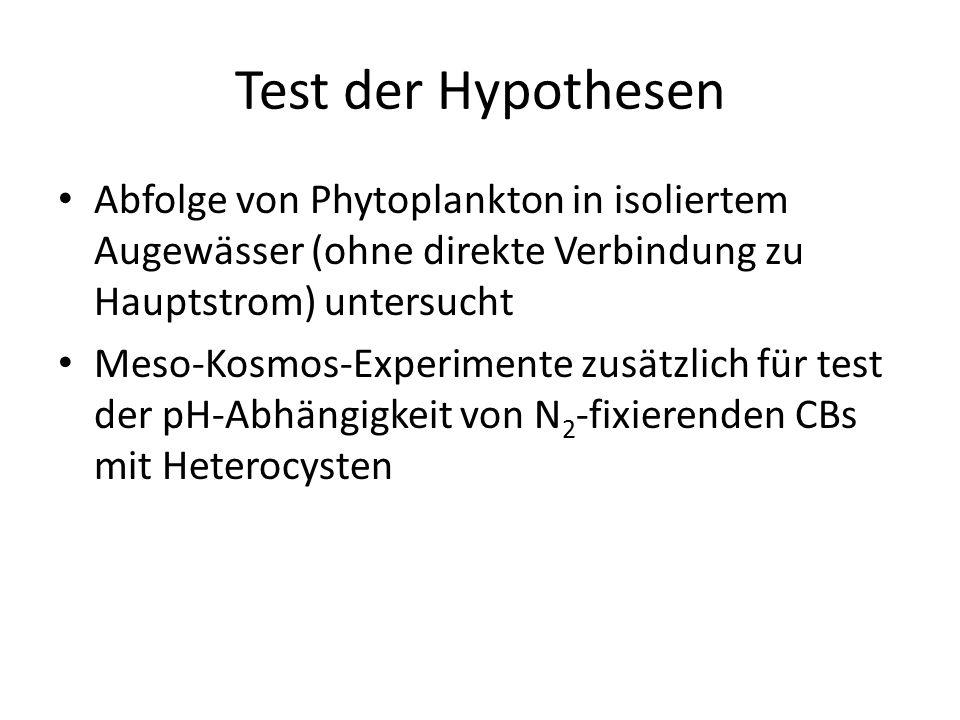 Test der Hypothesen Abfolge von Phytoplankton in isoliertem Augewässer (ohne direkte Verbindung zu Hauptstrom) untersucht Meso-Kosmos-Experimente zusätzlich für test der pH-Abhängigkeit von N 2 -fixierenden CBs mit Heterocysten