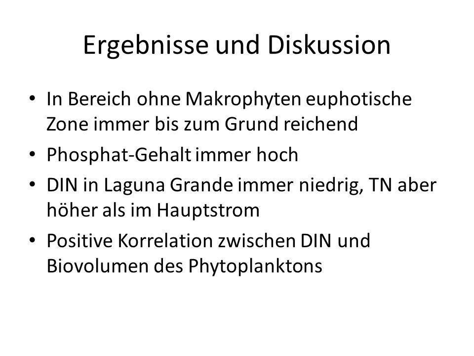 Ergebnisse und Diskussion In Bereich ohne Makrophyten euphotische Zone immer bis zum Grund reichend Phosphat-Gehalt immer hoch DIN in Laguna Grande immer niedrig, TN aber höher als im Hauptstrom Positive Korrelation zwischen DIN und Biovolumen des Phytoplanktons