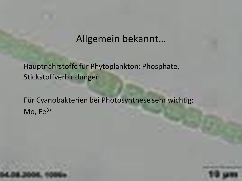 Allgemein bekannt… Hauptnährstoffe für Phytoplankton: Phosphate, Stickstoffverbindungen Für Cyanobakterien bei Photosynthese sehr wichtig: Mo, Fe 3+