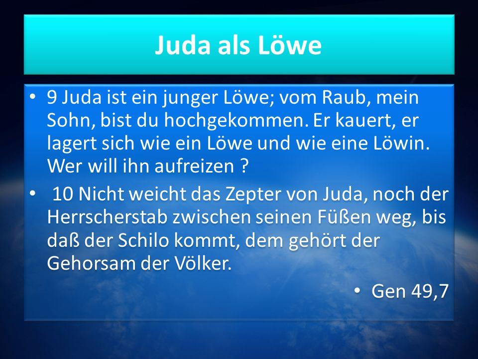 Juda als Löwe 9 Juda ist ein junger Löwe; vom Raub, mein Sohn, bist du hochgekommen.
