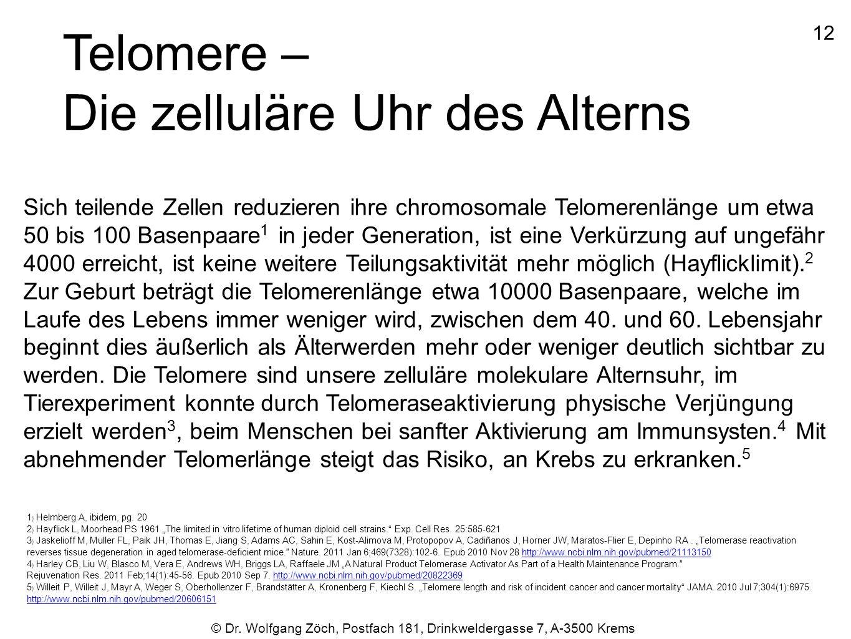 © Dr. Wolfgang Zöch, Postfach 181, Drinkweldergasse 7, A-3500 Krems Telomere – Die zelluläre Uhr des Alterns Sich teilende Zellen reduzieren ihre chro