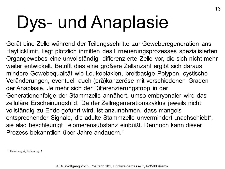 1313 © Dr. Wolfgang Zöch, Postfach 181, Drinkweldergasse 7, A-3500 Krems Dys- und Anaplasie Gerät eine Zelle während der Teilungsschritte zur Gewebere