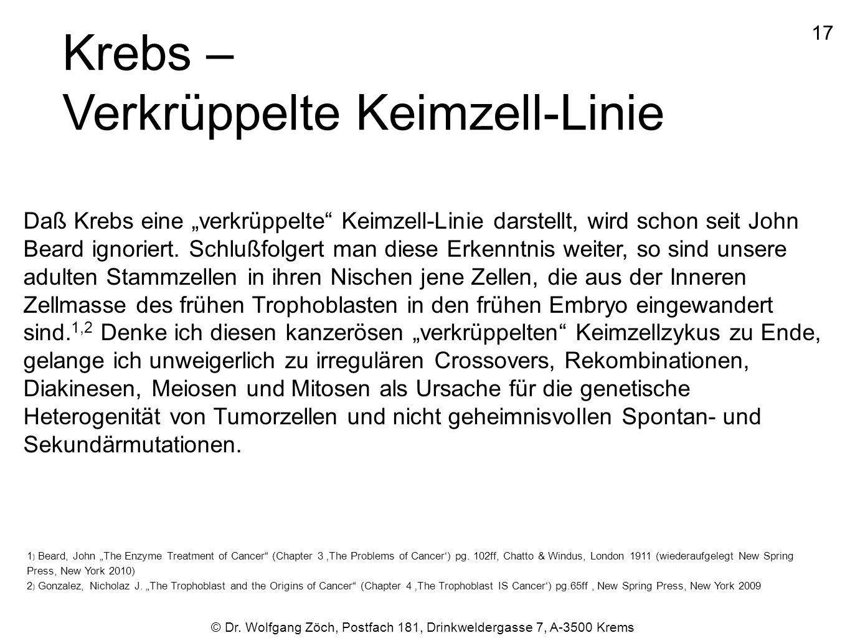 """1717 © Dr. Wolfgang Zöch, Postfach 181, Drinkweldergasse 7, A-3500 Krems Krebs – Verkrüppelte Keimzell-Linie Daß Krebs eine """"verkrüppelte"""" Keimzell-Li"""