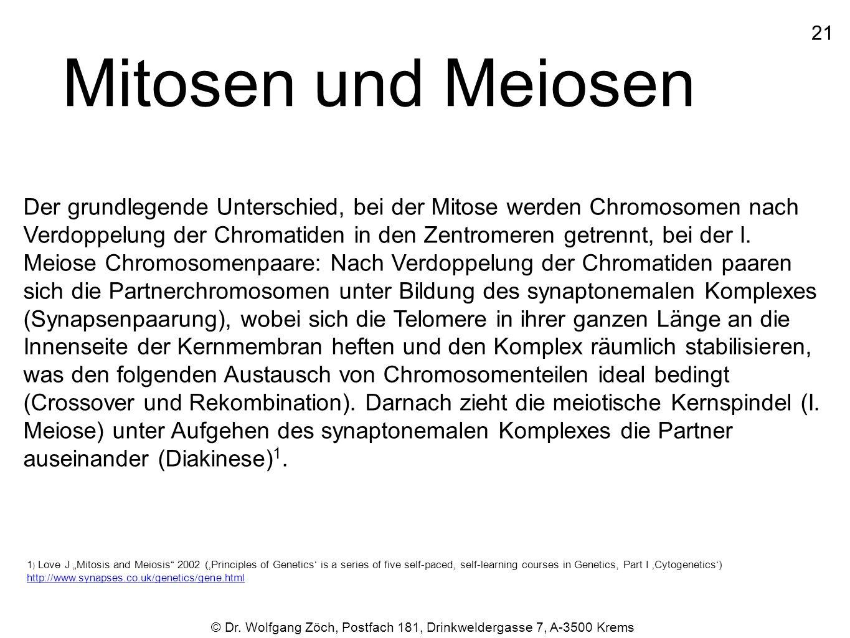 2121 © Dr. Wolfgang Zöch, Postfach 181, Drinkweldergasse 7, A-3500 Krems Mitosen und Meiosen Der grundlegende Unterschied, bei der Mitose werden Chrom
