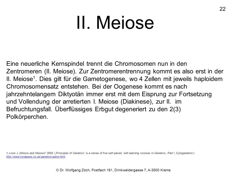 II. Meiose Eine neuerliche Kernspindel trennt die Chromosomen nun in den Zentromeren (II. Meiose). Zur Zentromerentrennung kommt es also erst in der I