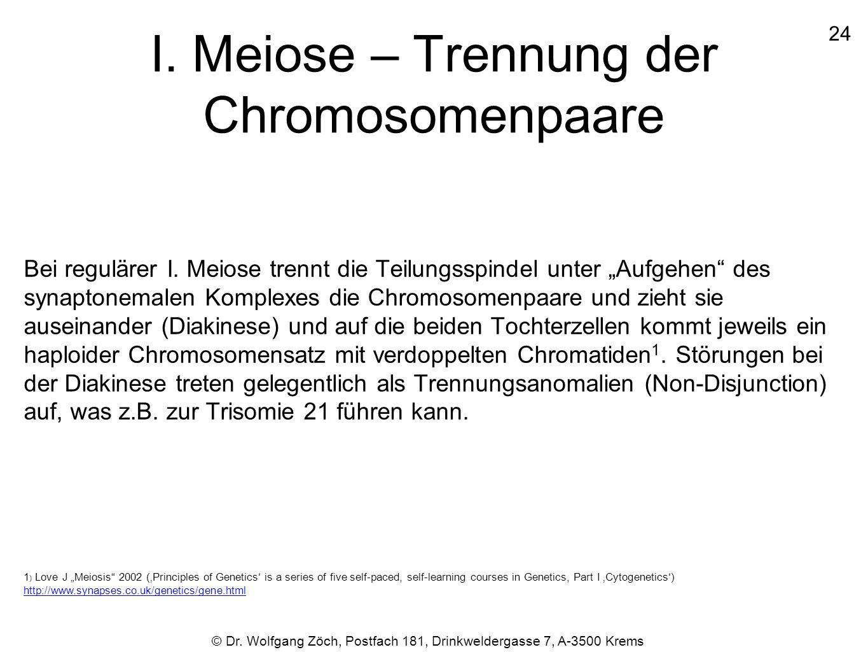 """I. Meiose – Trennung der Chromosomenpaare Bei regulärer I. Meiose trennt die Teilungsspindel unter """"Aufgehen"""" des synaptonemalen Komplexes die Chromos"""