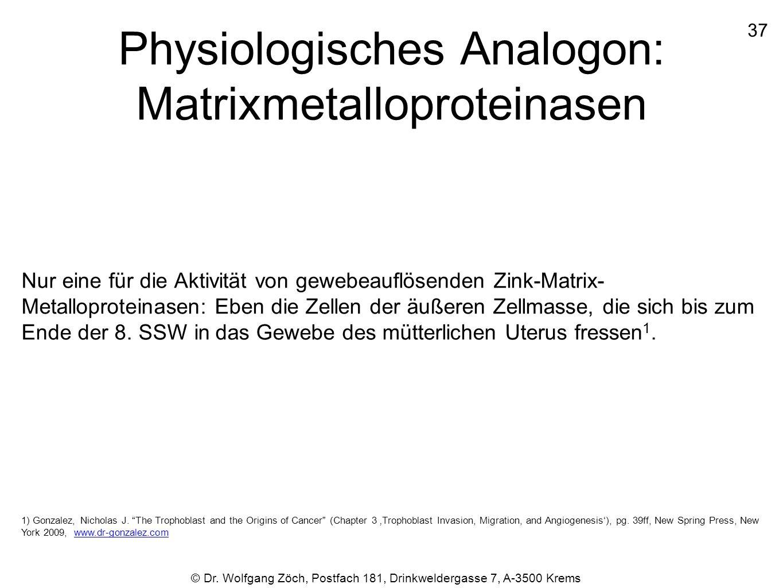 Physiologisches Analogon: Matrixmetalloproteinasen Nur eine für die Aktivität von gewebeauflösenden Zink-Matrix- Metalloproteinasen: Eben die Zellen d
