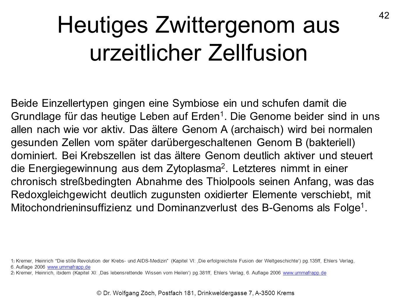 Heutiges Zwittergenom aus urzeitlicher Zellfusion Beide Einzellertypen gingen eine Symbiose ein und schufen damit die Grundlage für das heutige Leben