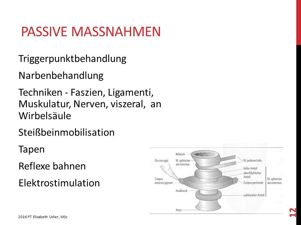 PASSIVE MASSNAHMEN Triggerpunktbehandlung Narbenbehandlung Techniken - Faszien, Ligamenti, Muskulatur, Nerven, viszeral, an Wirbelsäule Steißbeinmobil