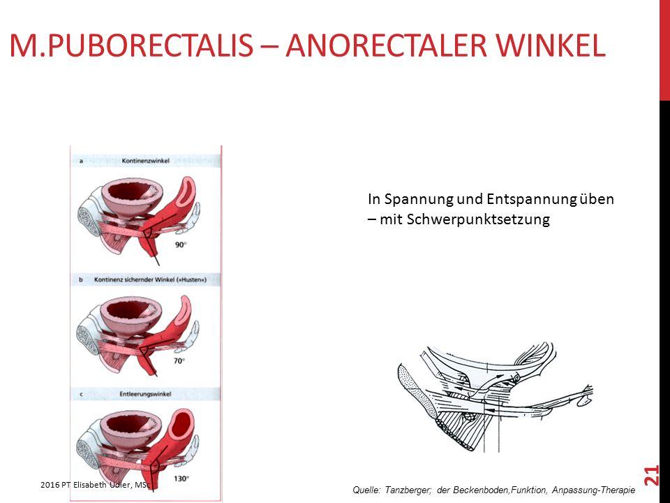 M.PUBORECTALIS – ANORECTALER WINKEL Quelle: Tanzberger; der Beckenboden,Funktion, Anpassung-Therapie In Spannung und Entspannung üben – mit Schwerpunk