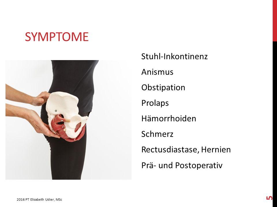 SYMPTOME Stuhl-Inkontinenz Anismus Obstipation Prolaps Hämorrhoiden Schmerz Rectusdiastase, Hernien Prä- und Postoperativ 2016 PT Elisabeth Udier, MSc