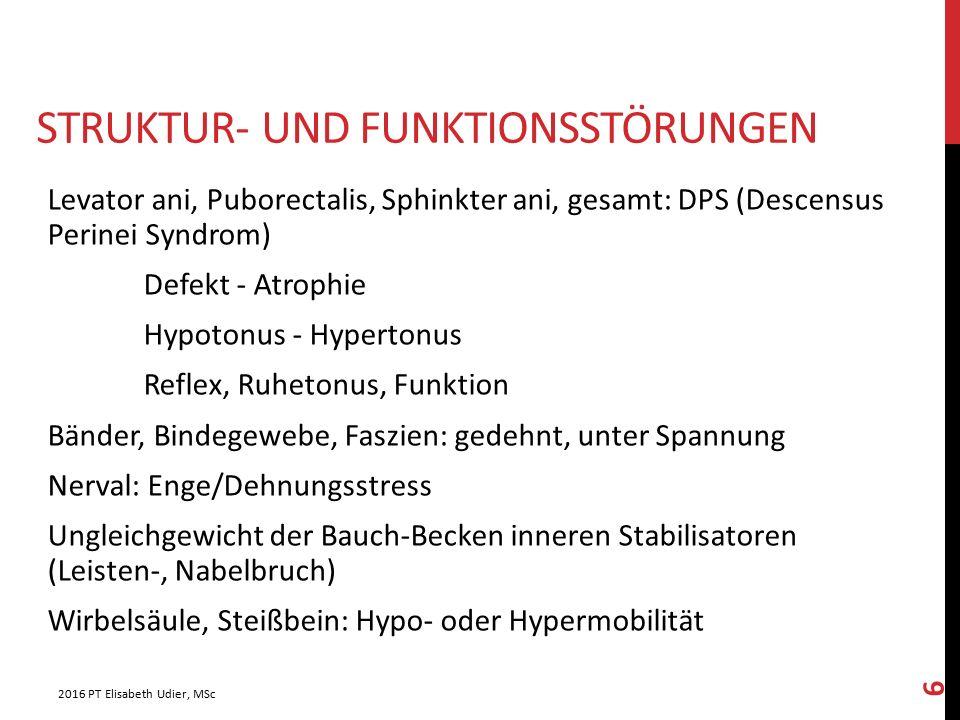 STRUKTUR- UND FUNKTIONSSTÖRUNGEN Levator ani, Puborectalis, Sphinkter ani, gesamt: DPS (Descensus Perinei Syndrom) Defekt - Atrophie Hypotonus - Hyper