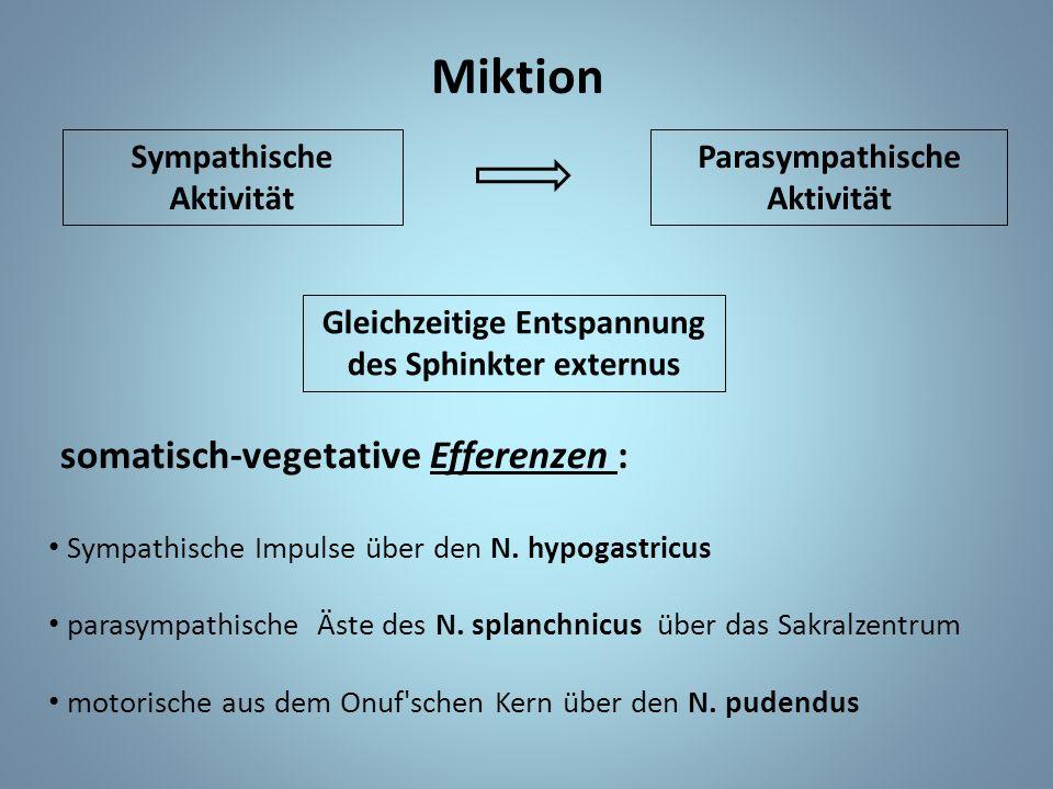 Miktion Sympathische Aktivität Parasympathische Aktivität Gleichzeitige Entspannung des Sphinkter externus somatisch-vegetative Efferenzen : Sympathische Impulse über den N.
