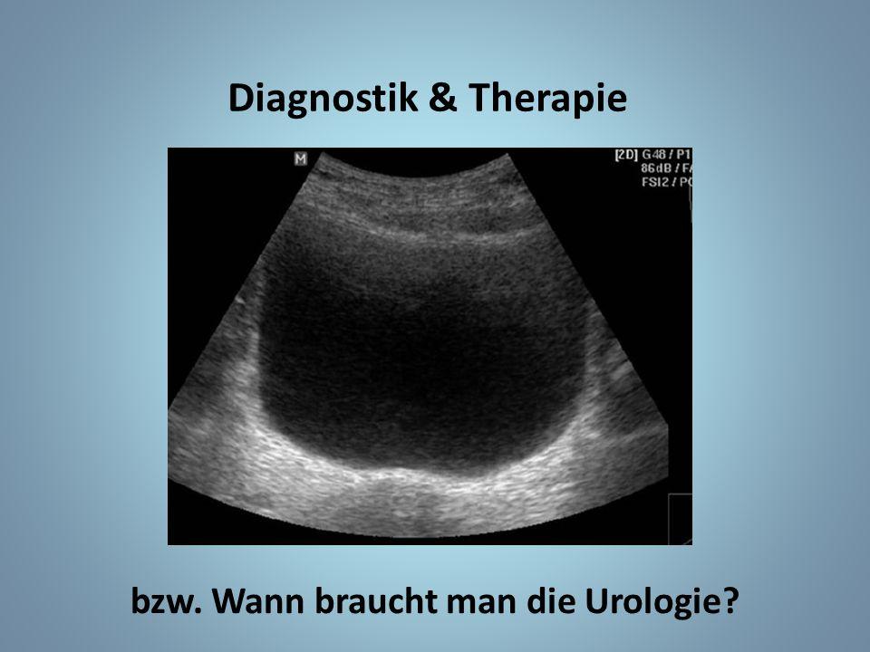 Diagnostik & Therapie bzw. Wann braucht man die Urologie?