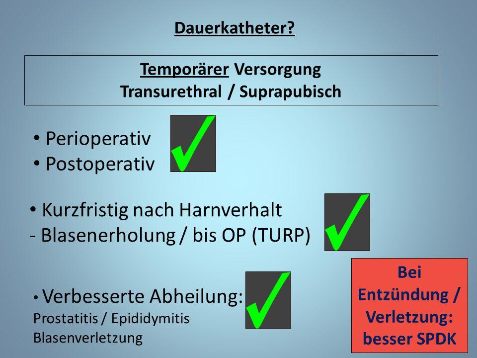 Dauerkatheter? Temporärer Versorgung Transurethral / Suprapubisch Perioperativ Postoperativ Kurzfristig nach Harnverhalt - Blasenerholung / bis OP (TU