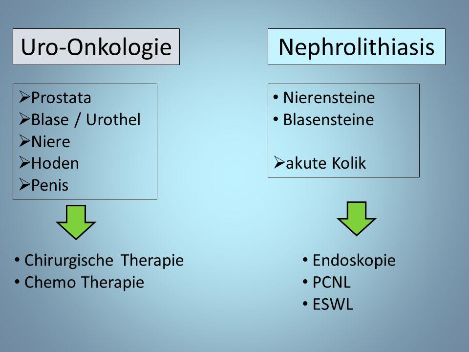 Uro-Onkologie  Prostata  Blase / Urothel  Niere  Hoden  Penis Nephrolithiasis Chirurgische Therapie Chemo Therapie Nierensteine Blasensteine  akute Kolik Endoskopie PCNL ESWL