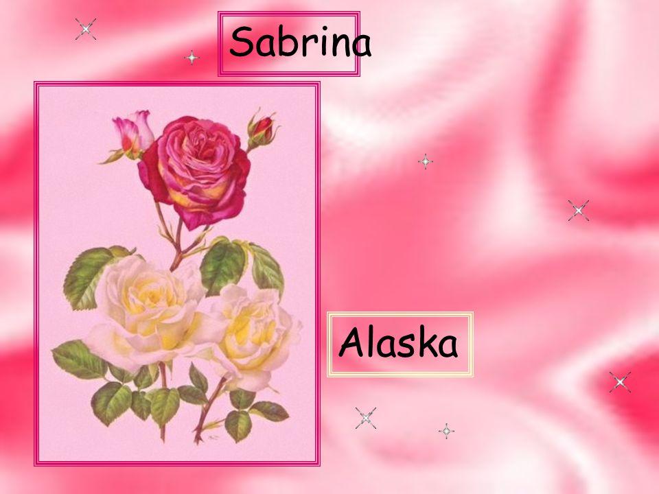 Sabrina Alaska