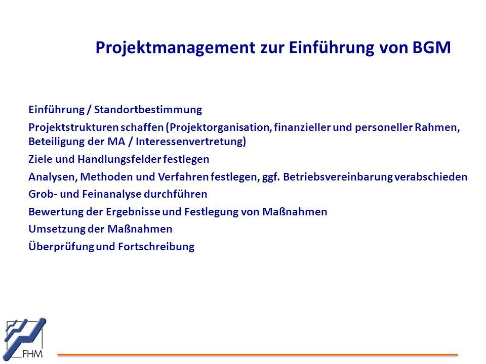 Projektmanagement zur Einführung von BGM Einführung / Standortbestimmung Projektstrukturen schaffen (Projektorganisation, finanzieller und personeller Rahmen, Beteiligung der MA / Interessenvertretung) Ziele und Handlungsfelder festlegen Analysen, Methoden und Verfahren festlegen, ggf.