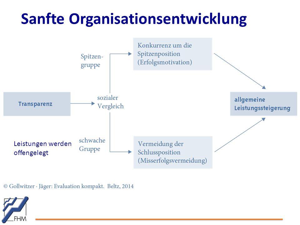 Sanfte Organisationsentwicklung Leistungen werden offengelegt