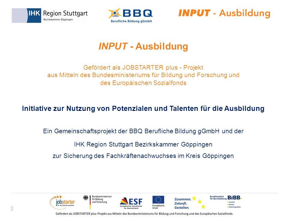 2 INPUT - Ausbildung Gefördert als JOBSTARTER plus - Projekt aus Mitteln des Bundesministeriums für Bildung und Forschung und des Europäischen Sozialf