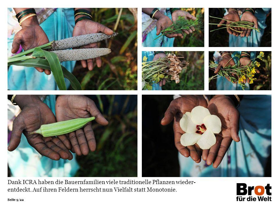 Seite 9/22 Dank ICRA haben die Bauernfamilien viele traditionelle Pflanzen wieder- entdeckt. Auf ihren Feldern herrscht nun Vielfalt statt Monotonie.
