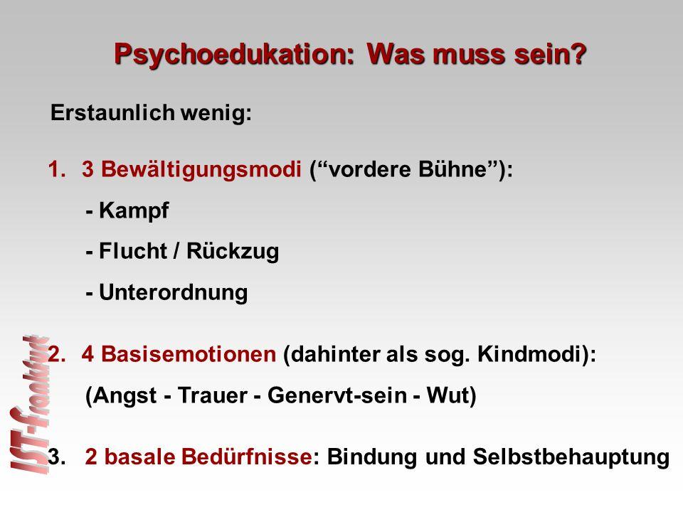 """1.3 Bewältigungsmodi (""""vordere Bühne""""): - Kampf - Flucht / Rückzug - Unterordnung Erstaunlich wenig: 3. 2 basale Bedürfnisse: Bindung und Selbstbehaup"""