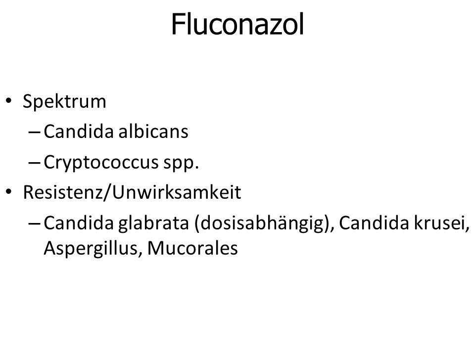 Fluconazol Spektrum – Candida albicans – Cryptococcus spp. Resistenz/Unwirksamkeit – Candida glabrata (dosisabhängig), Candida krusei, Aspergillus, Mu