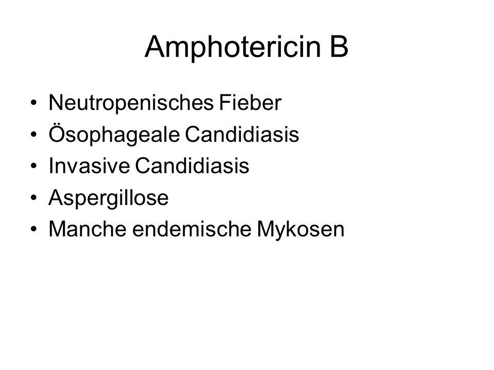 Amphotericin B Neutropenisches Fieber Ösophageale Candidiasis Invasive Candidiasis Aspergillose Manche endemische Mykosen