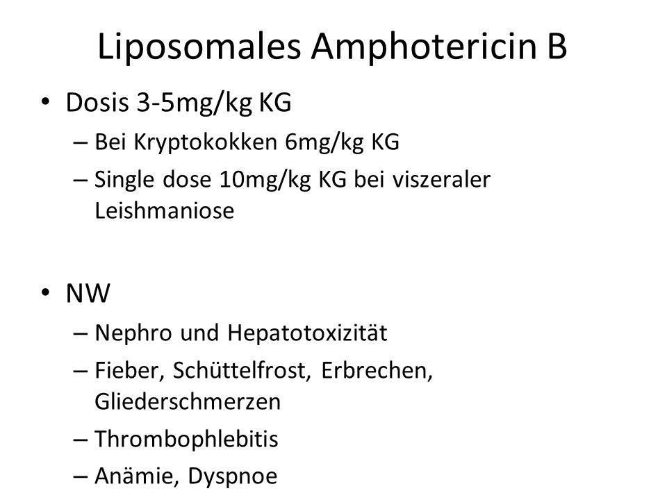 Liposomales Amphotericin B Dosis 3-5mg/kg KG – Bei Kryptokokken 6mg/kg KG – Single dose 10mg/kg KG bei viszeraler Leishmaniose NW – Nephro und Hepatotoxizität – Fieber, Schüttelfrost, Erbrechen, Gliederschmerzen – Thrombophlebitis – Anämie, Dyspnoe