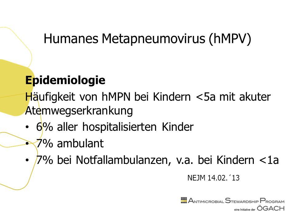 Humanes Metapneumovirus (hMPV) Epidemiologie Häufigkeit von hMPN bei Kindern <5a mit akuter Atemwegserkrankung 6% aller hospitalisierten Kinder 7% ambulant 7% bei Notfallambulanzen, v.a.