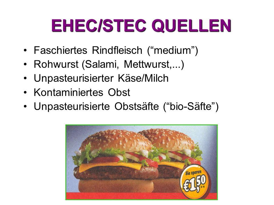 """EHEC/STEC QUELLEN Faschiertes Rindfleisch (""""medium"""") Rohwurst (Salami, Mettwurst,...) Unpasteurisierter Käse/Milch Kontaminiertes Obst Unpasteurisiert"""