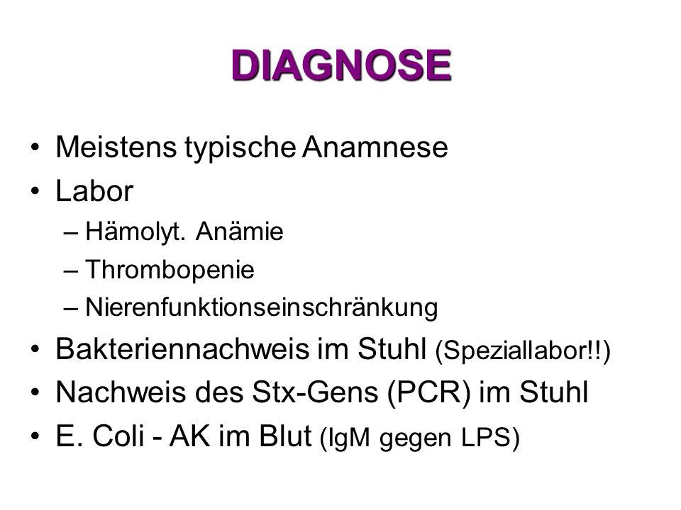 DIAGNOSE Meistens typische Anamnese Labor –Hämolyt. Anämie –Thrombopenie –Nierenfunktionseinschränkung Bakteriennachweis im Stuhl (Speziallabor!!) Nac