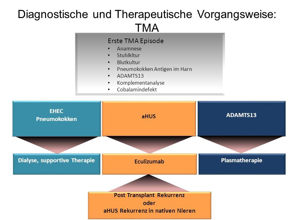 Diagnostische und Therapeutische Vorgangsweise: TMA Erste TMA Episode Anamnese Stuhlkltur Blutkultur Pneumokokken Antigen im Harn ADAMTS13 Komplementa