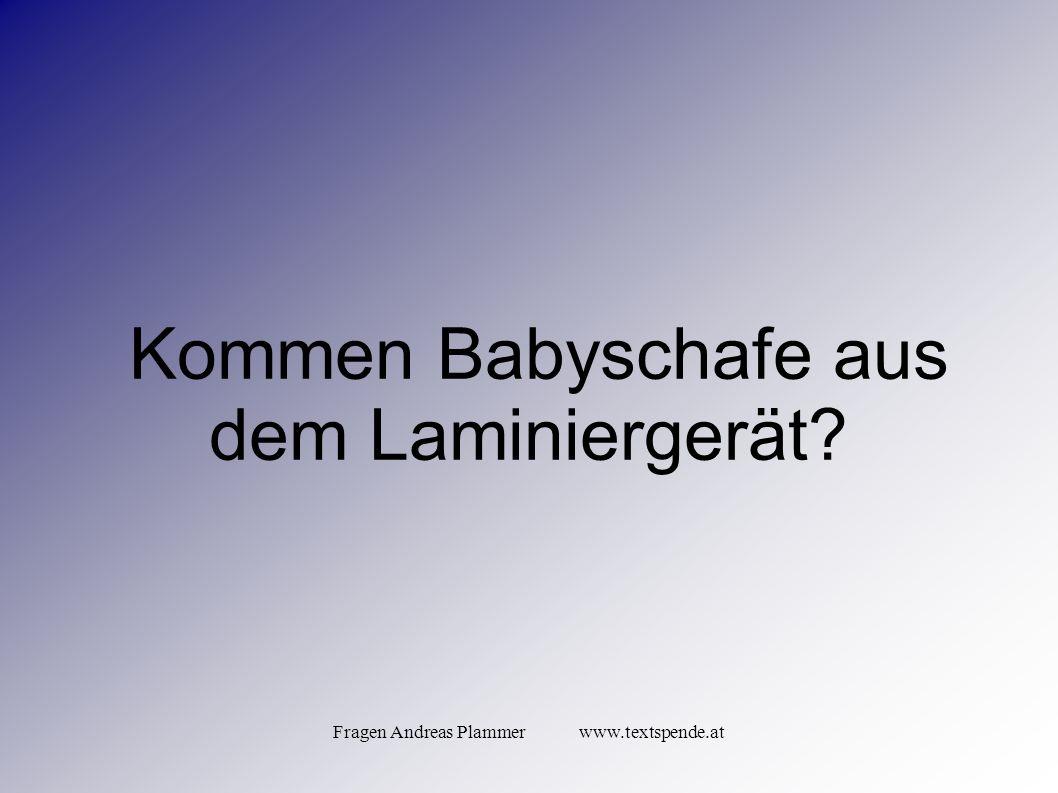 Fragen Andreas Plammer www.textspende.at Kommen Babyschafe aus dem Laminiergerät