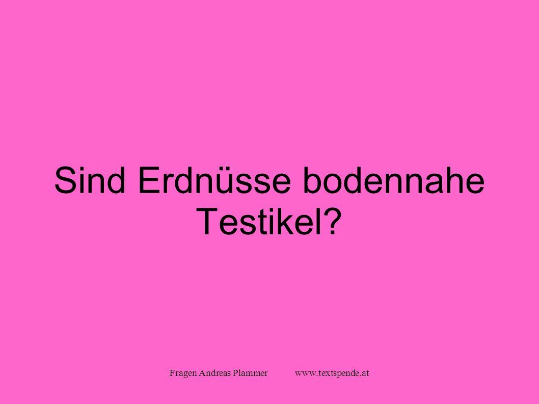 Fragen Andreas Plammer www.textspende.at Sind Erdnüsse bodennahe Testikel