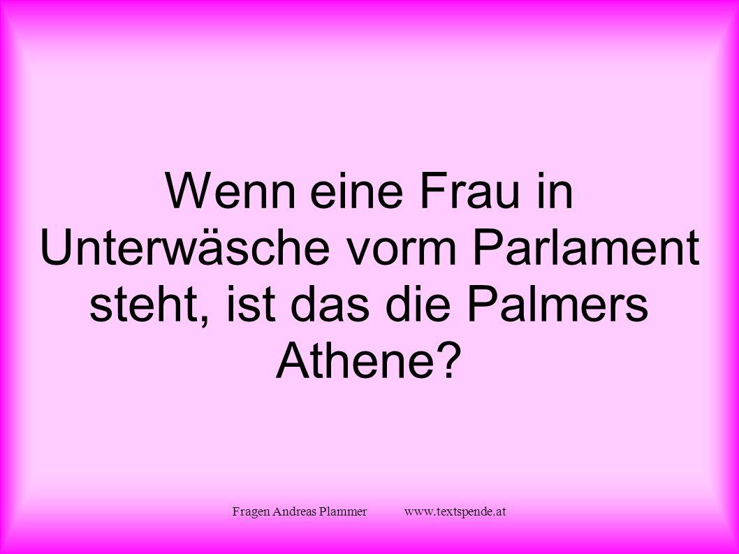 Fragen Andreas Plammer www.textspende.at Wenn eine Frau in Unterwäsche vorm Parlament steht, ist das die Palmers Athene