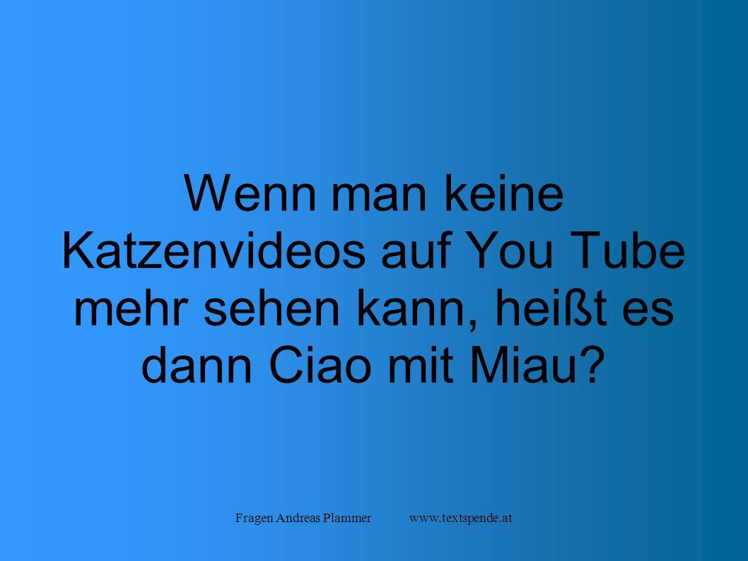 Fragen Andreas Plammer www.textspende.at Wenn man keine Katzenvideos auf You Tube mehr sehen kann, heißt es dann Ciao mit Miau