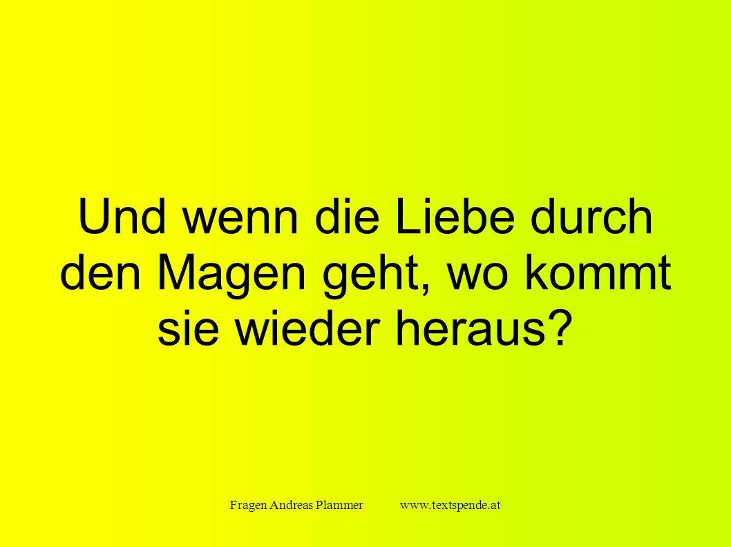 Fragen Andreas Plammer www.textspende.at Und wenn die Liebe durch den Magen geht, wo kommt sie wieder heraus