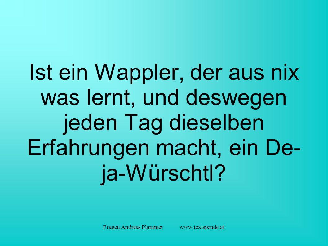 Fragen Andreas Plammer www.textspende.at Ist ein Wappler, der aus nix was lernt, und deswegen jeden Tag dieselben Erfahrungen macht, ein De- ja-Würschtl