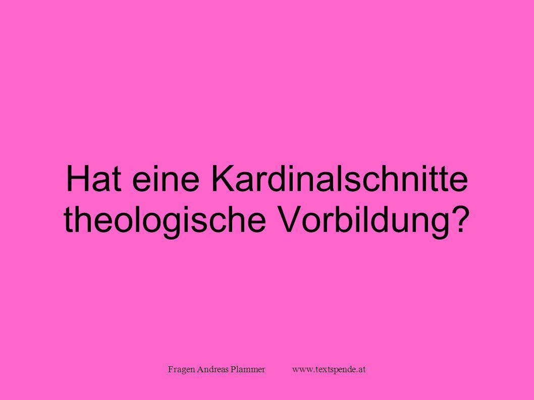 Fragen Andreas Plammer www.textspende.at Hat eine Kardinalschnitte theologische Vorbildung