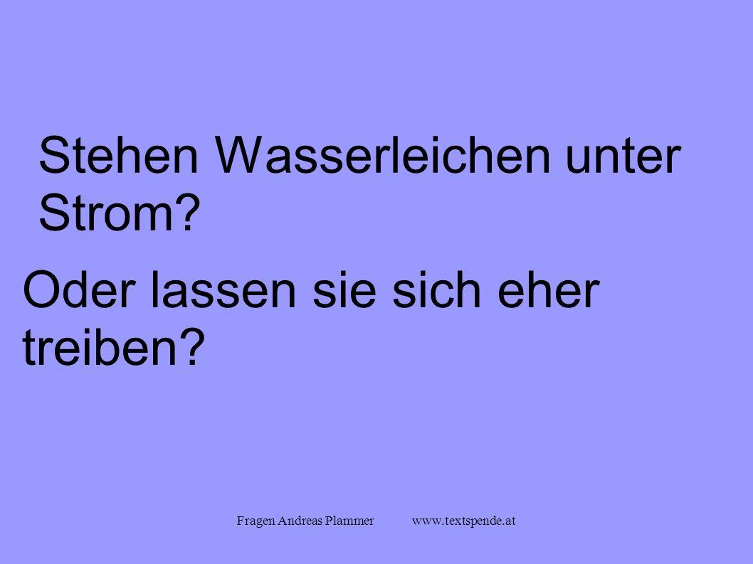 Fragen Andreas Plammer www.textspende.at Stehen Wasserleichen unter Strom.