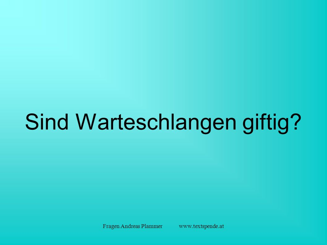 Fragen Andreas Plammer www.textspende.at Sind Warteschlangen giftig