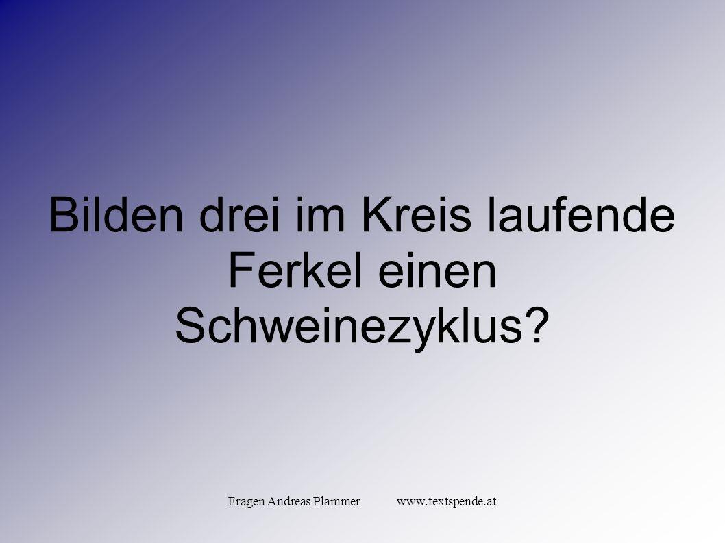 Fragen Andreas Plammer www.textspende.at Bilden drei im Kreis laufende Ferkel einen Schweinezyklus