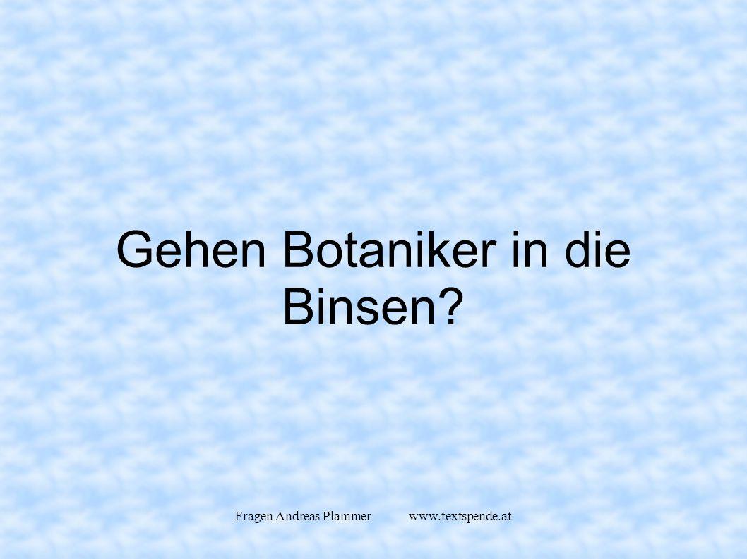Fragen Andreas Plammer www.textspende.at Gehen Botaniker in die Binsen