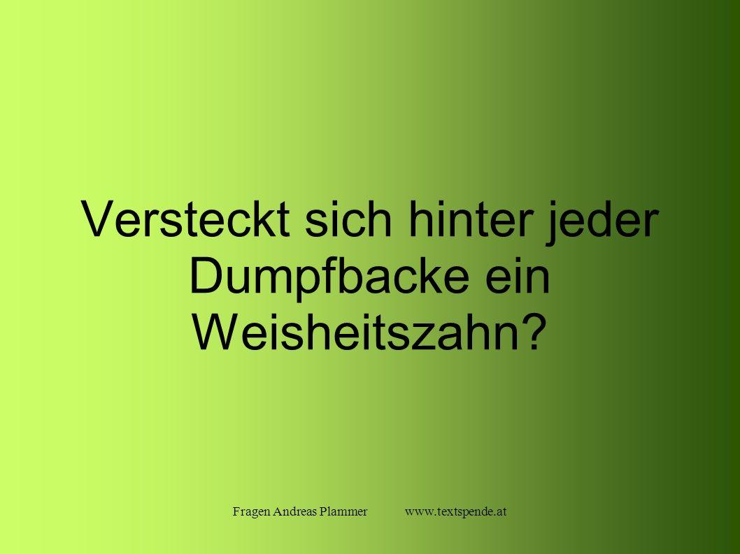 Fragen Andreas Plammer www.textspende.at Versteckt sich hinter jeder Dumpfbacke ein Weisheitszahn