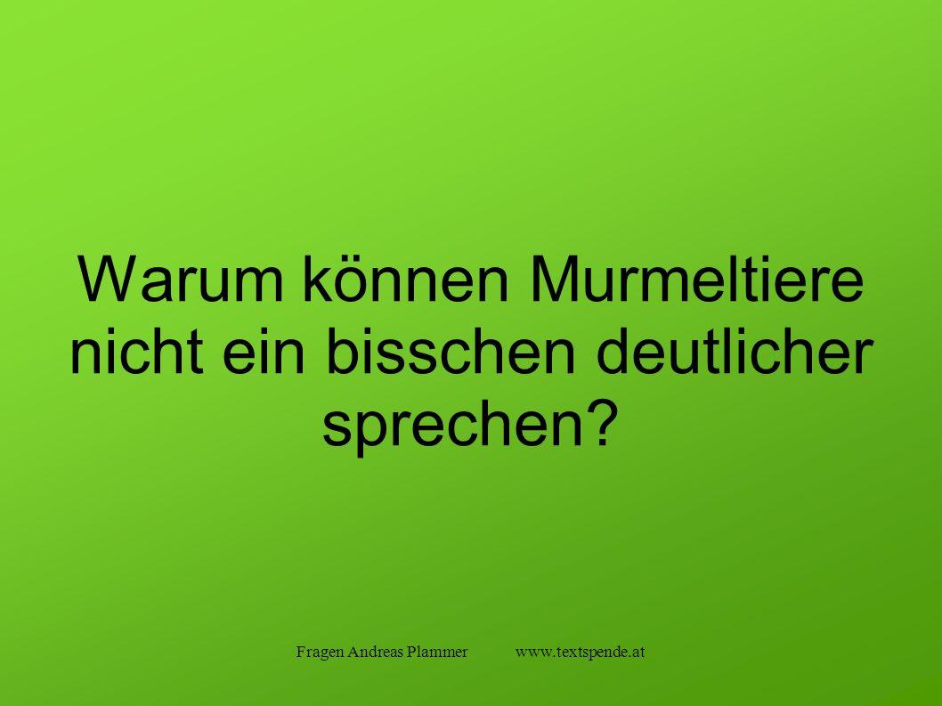 Fragen Andreas Plammer www.textspende.at Warum können Murmeltiere nicht ein bisschen deutlicher sprechen