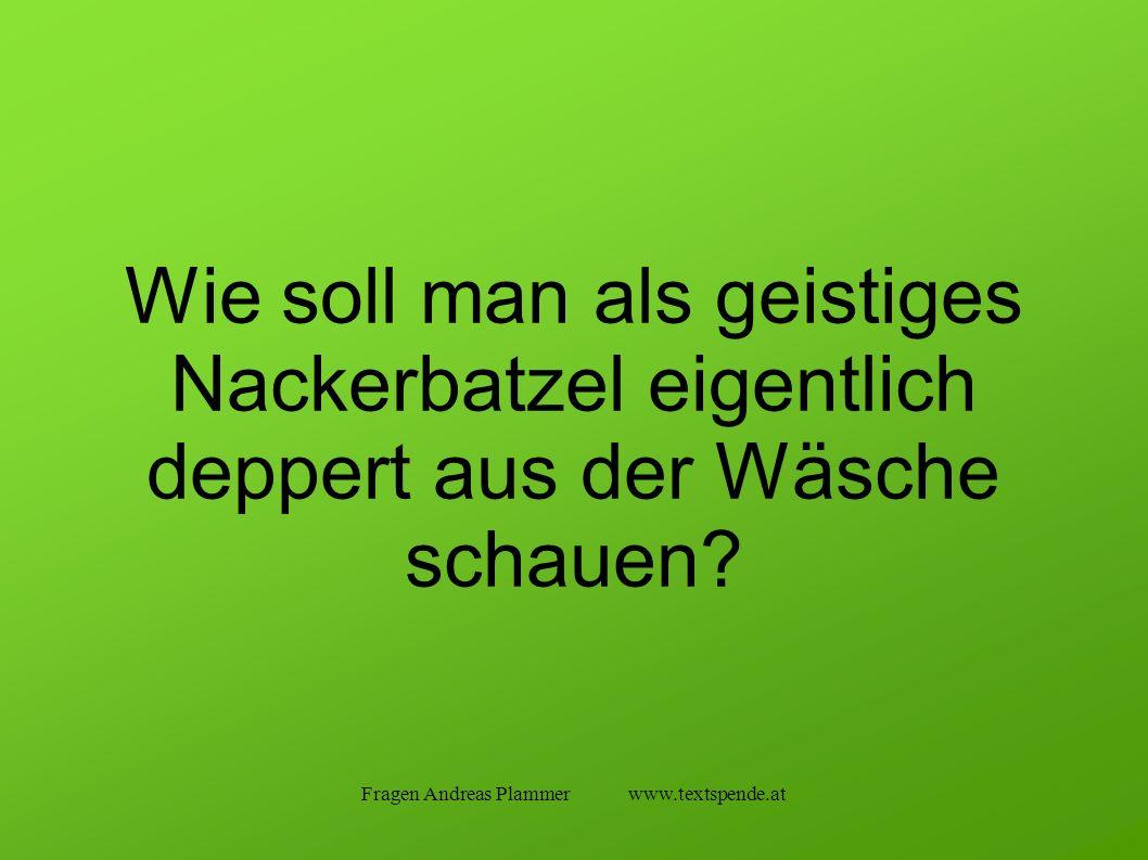 Fragen Andreas Plammer www.textspende.at Wie soll man als geistiges Nackerbatzel eigentlich deppert aus der Wäsche schauen