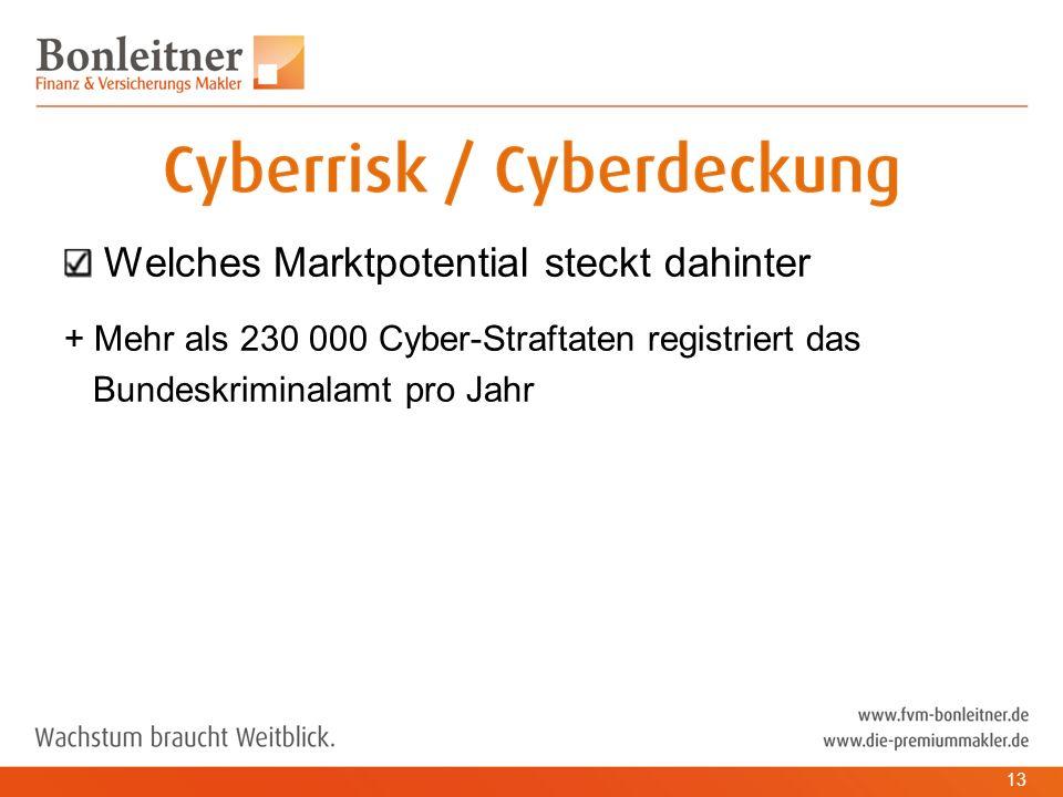 Welches Marktpotential steckt dahinter + Mehr als 230 000 Cyber-Straftaten registriert das Bundeskriminalamt pro Jahr 13
