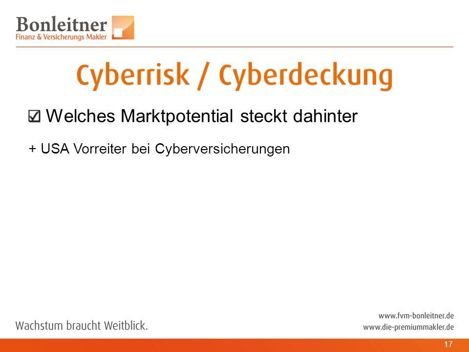 Welches Marktpotential steckt dahinter + USA Vorreiter bei Cyberversicherungen 17