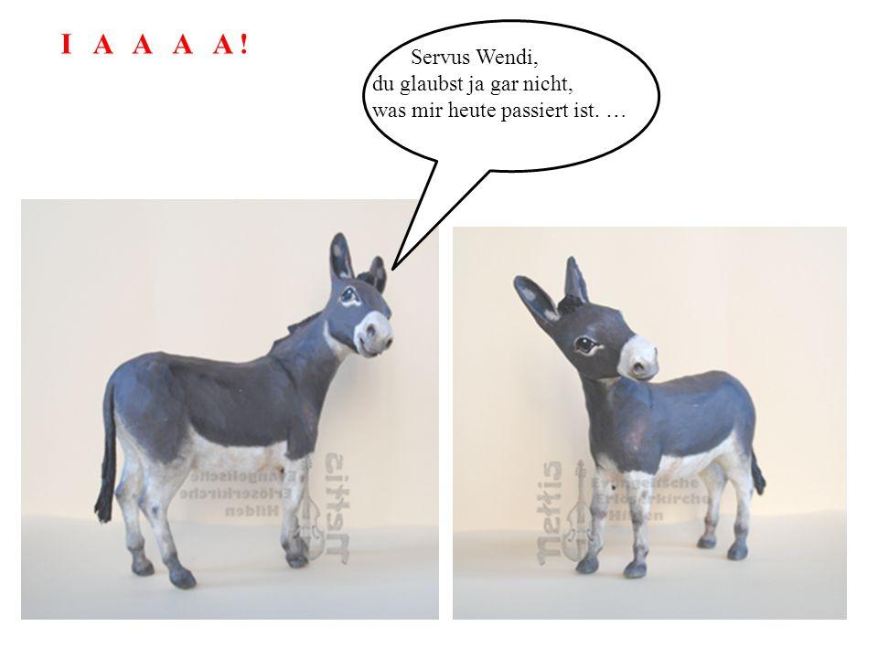 Servus Wendi, du glaubst ja gar nicht, was mir heute passiert ist. … I A A A A !